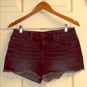 Lauren Conrad Denim Shorts